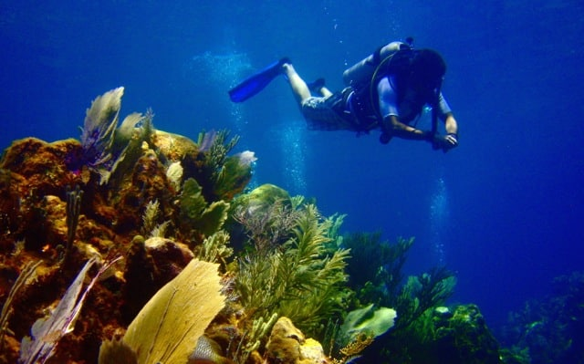 A scuba diving resort guest enjoying his stay on the beautiful island of Roatan.