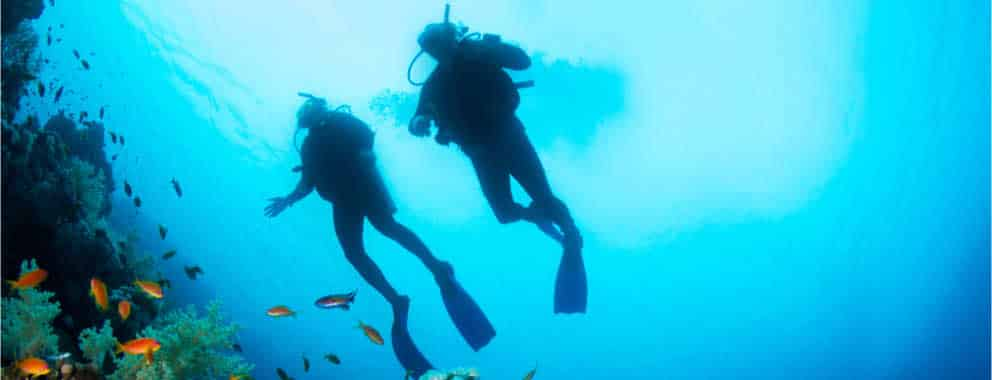 Enjoy scuba diving with our qualified trainers, popular even with other Roatan dive resorts