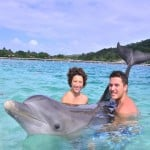 Diving with dolphins on Roatan