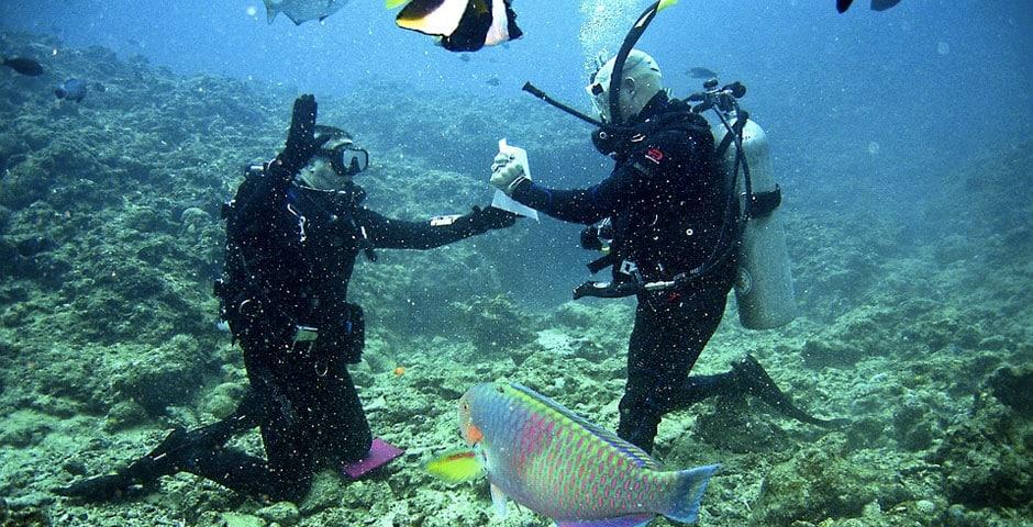 roatan-diving-certification