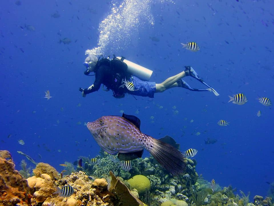 padi-advanced-open-water